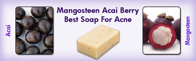 Natural Home Cures Mangosteen Acai Berry Soap Best Soap for Acne